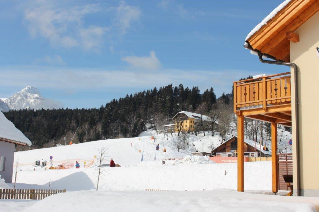 villa-sonnata-17-uitzicht-op-de-besneeuwde-bergen-en-skipiste